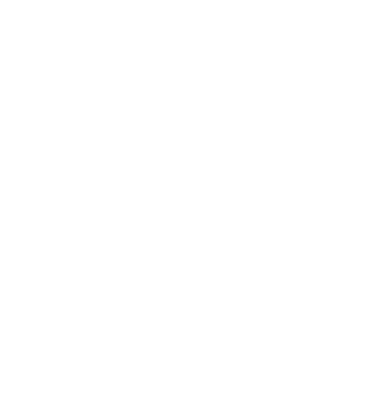 World Tourism Forum Institute