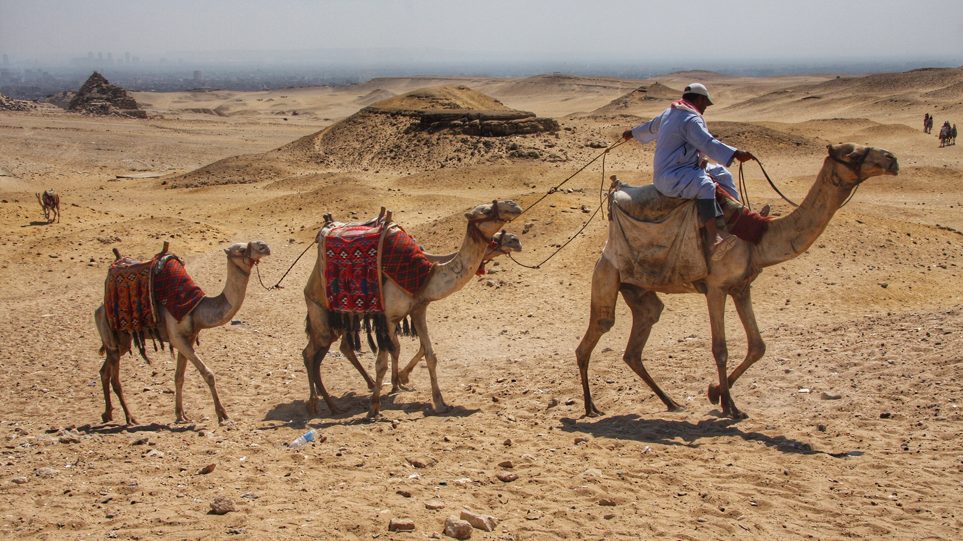 Tourism: dry season for Africa due to Covid-19
